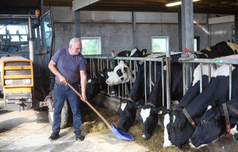 'Koe heeft baat bij rem op de melkgift voor de droogstand'