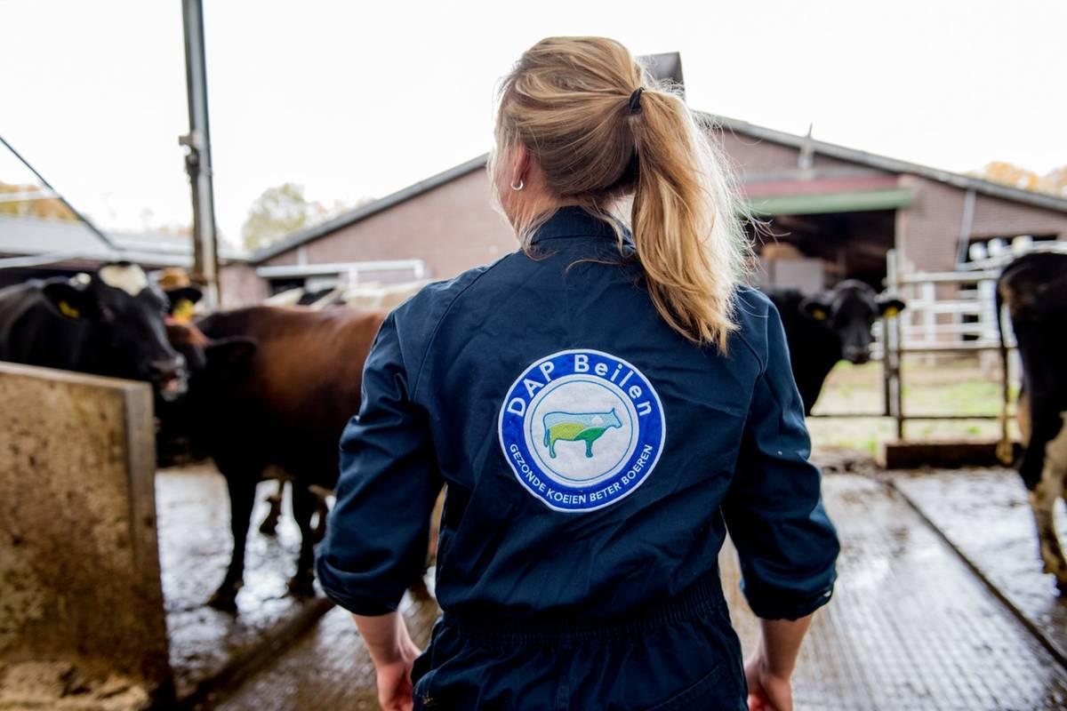 Onze aanpak leidt tot gezonde oude koeien