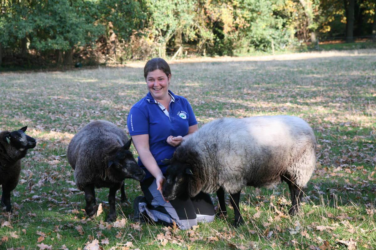 Dierenarts Lisa Schäffler van dierenartsenpraktijk Beilen